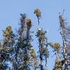 Prelude Lake Territorial Park 26