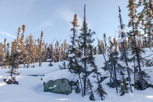 Prelude Lake Territorial Park 25