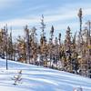 Prelude Lake Territorial Park 7