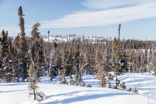 Prelude Lake Territorial Park 17