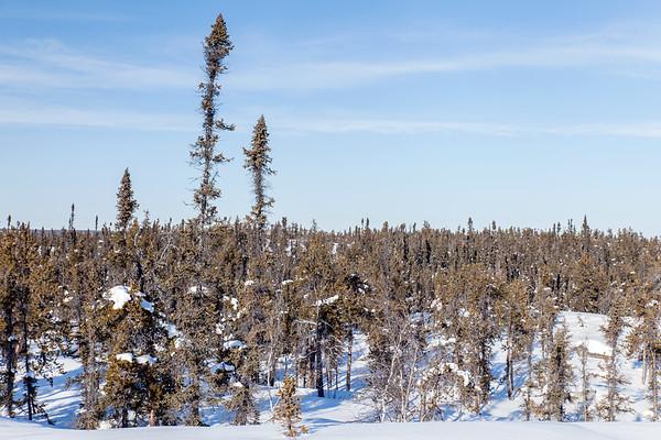 Prelude Lake Territorial Park 11