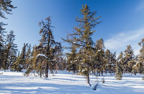 Prelude Lake Territorial Park 1