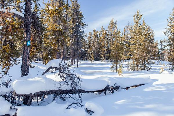 Prelude Lake Territorial Park 2