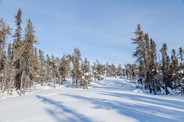 Prelude Lake Territorial Park 14