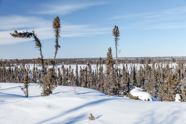 Prelude Lake Territorial Park 20