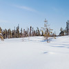 Prelude Lake Territorial Park 9
