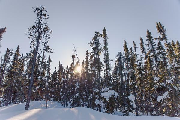 Prelude Lake Territorial Park 24