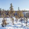 Prelude Lake Territorial Park 4