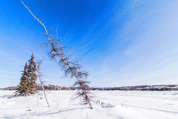 Landscape at Vee Lake close to Yellowknife