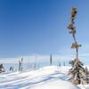 Prelude Lake Territorial Park 22