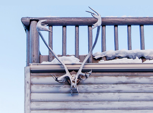 Antlers on a building in Yellowknife / Bois sur un bâtiment à Yellowknife
