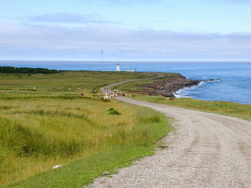 Lighthouse near Cape Breton Highlands