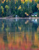 Lake and Loon and cottage