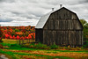 Barn and colors of fall