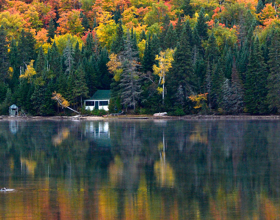 Cottage with Loon