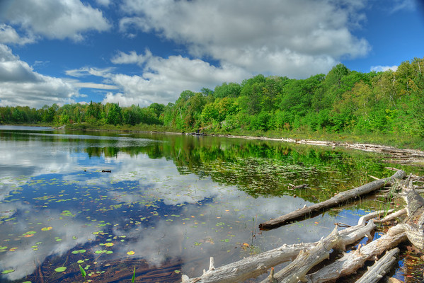 Logs and reflections on Crooked Lake