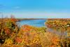 Niagara River and view to the lake