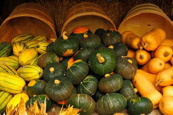 Flowing over with gourds