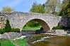 Bridge at Webster Falls