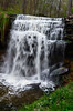 Dog face in Waterfall