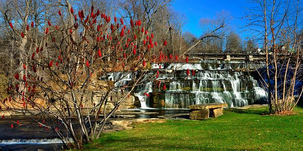 Sumac and waterfall