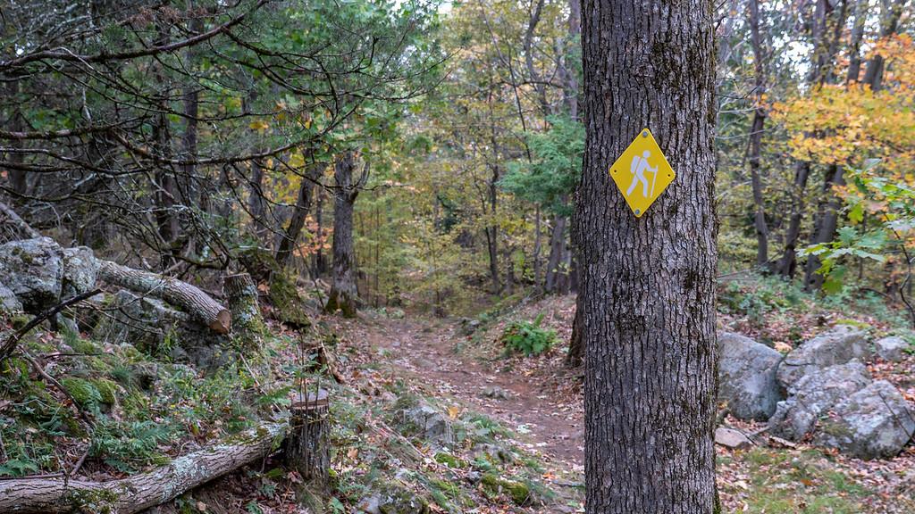 Landon Bay hiking trails
