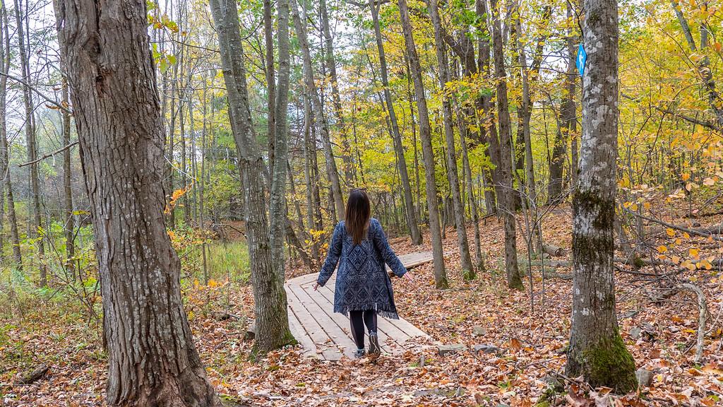 Fall hiking at 1000 Islands National Park