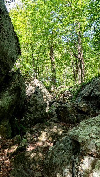 Boulders to hike over to the lookout trail