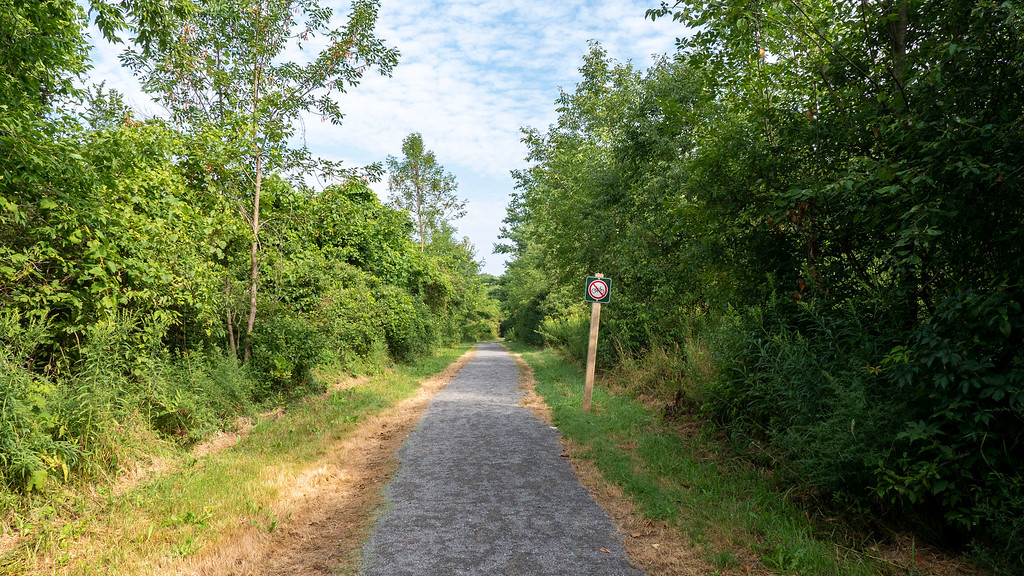 Beginning of the Jones Creek Trails from the parking lot