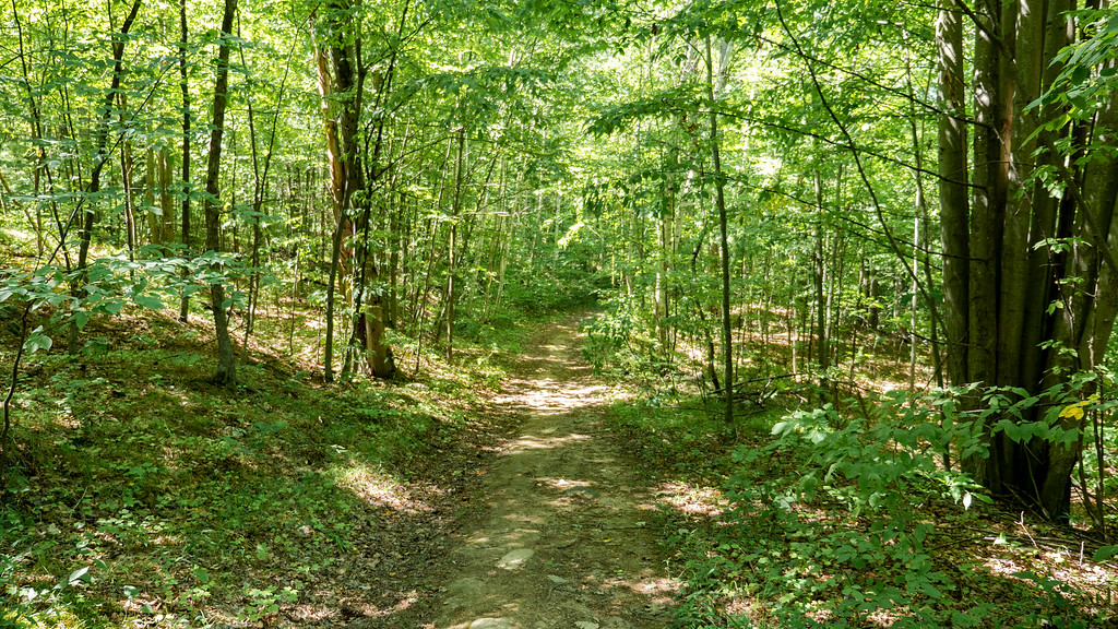 Hiking trails at Marble Rock, 1000 Islands