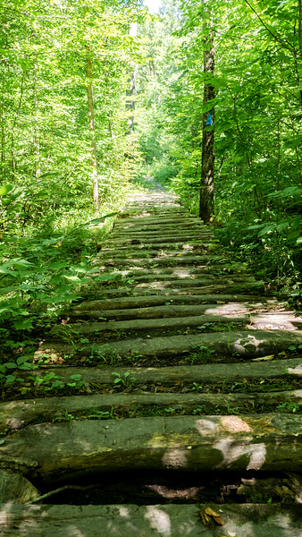 Wooden boardwalk on the hiking path
