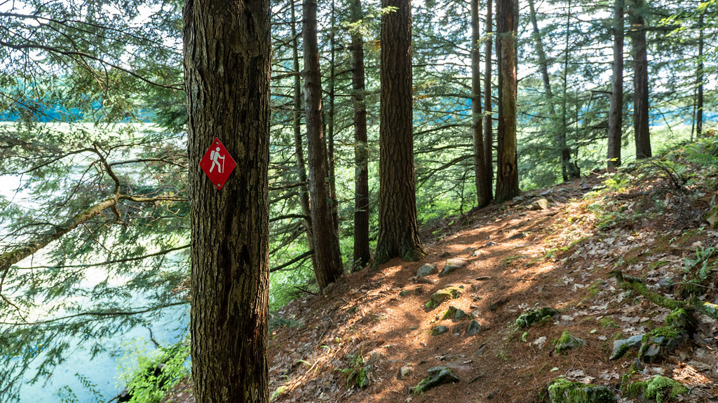 Things to do in the Thousand Islands - Hiking at Jones Creek Trails, Thousand Islands National Park
