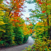 Road through fall foliage in Algonquin Provincial Park in Ontario