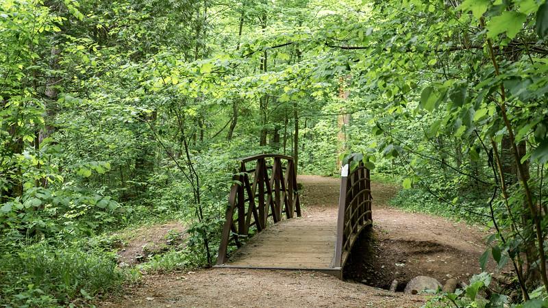 Hiking trails in Brantford