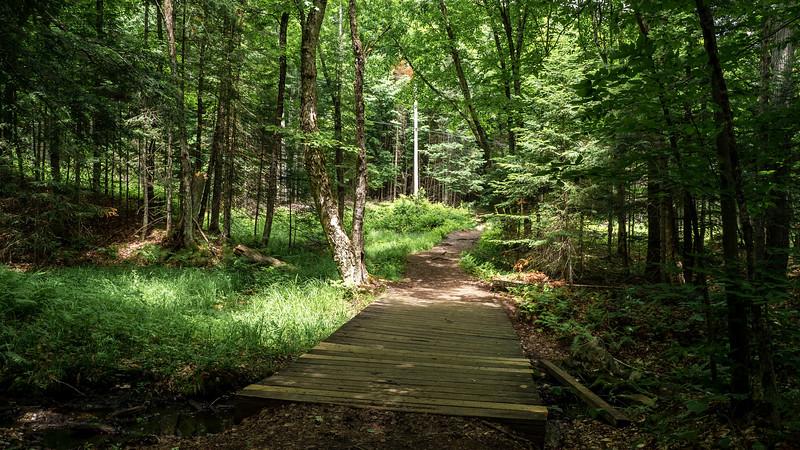 Stubb's Falls Trail - Arrowhead Provincial Park