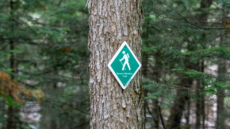 Beaver Meadow Trail