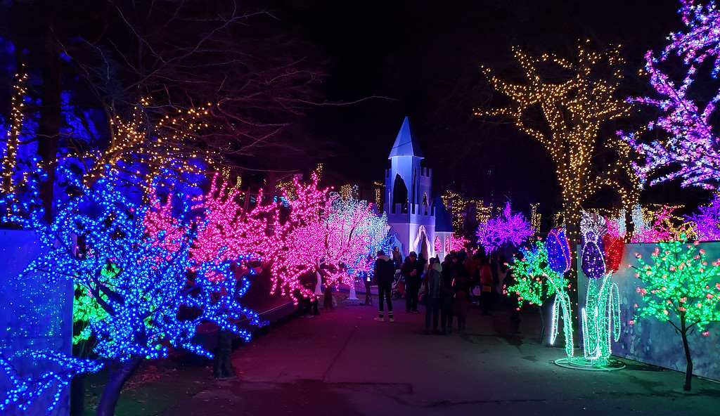 Aurora Winter Festival - Christmas lights in Toronto - Luminous Gardens