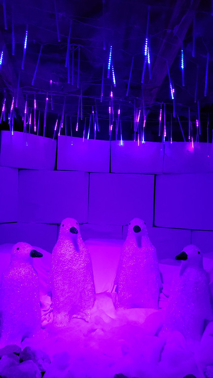 Aurora Winter Festival - Christmas lights in Toronto - Arctic retreat