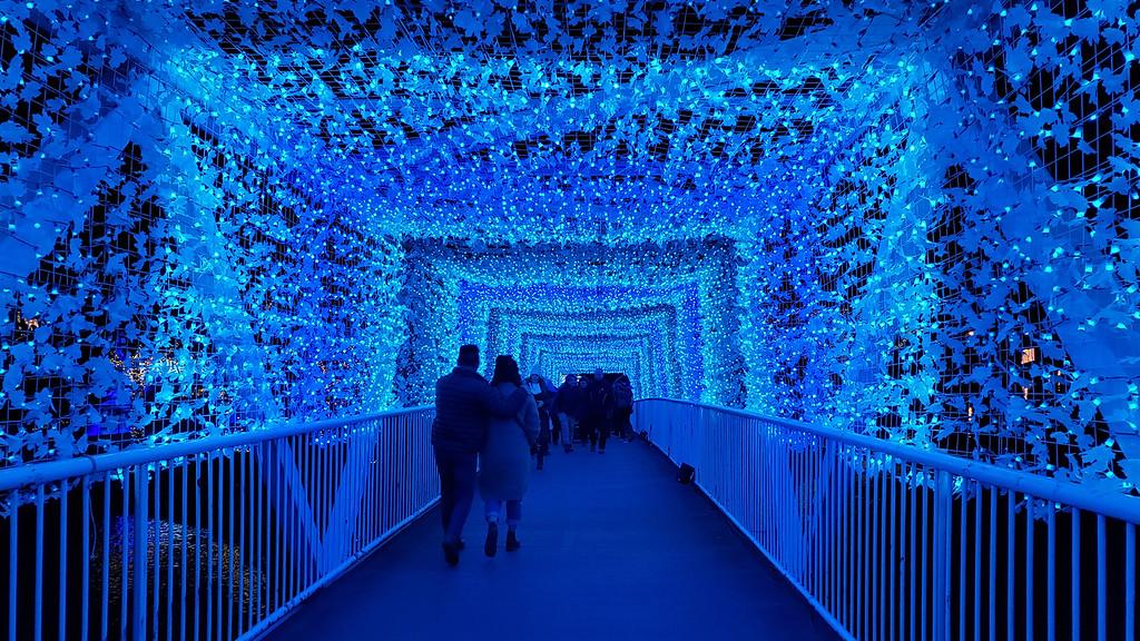 Aurora Winter Festival Toronto - Blue light tunnel
