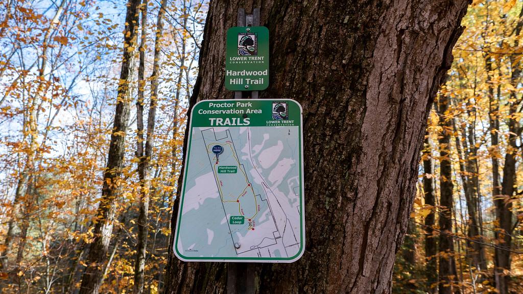 Proctor Park Conservation Area Trail Map