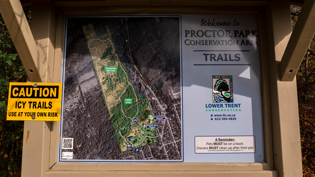 Proctor Park Conservation Area hiking trails