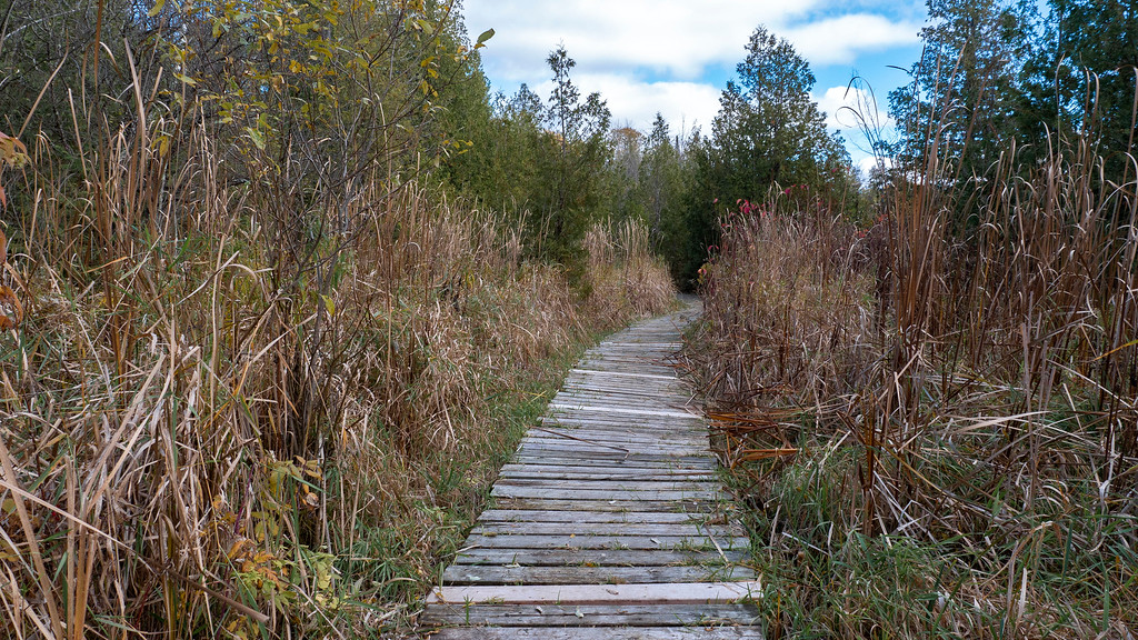 HR Frink Conservation Area - Hiking trails Bay of Quinte