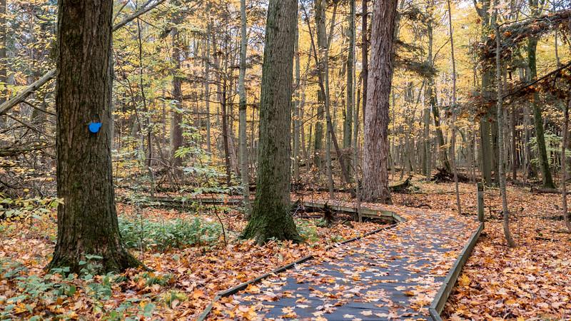 Presqu'ile Provincial Park hiking trails
