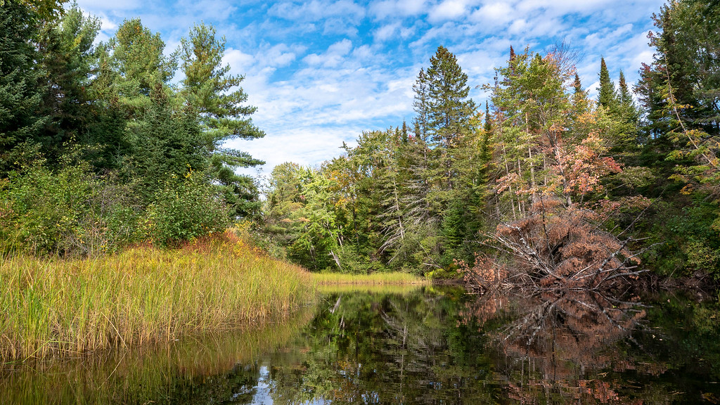 Canoeing on the Bonnechere River - Ontario fall colors