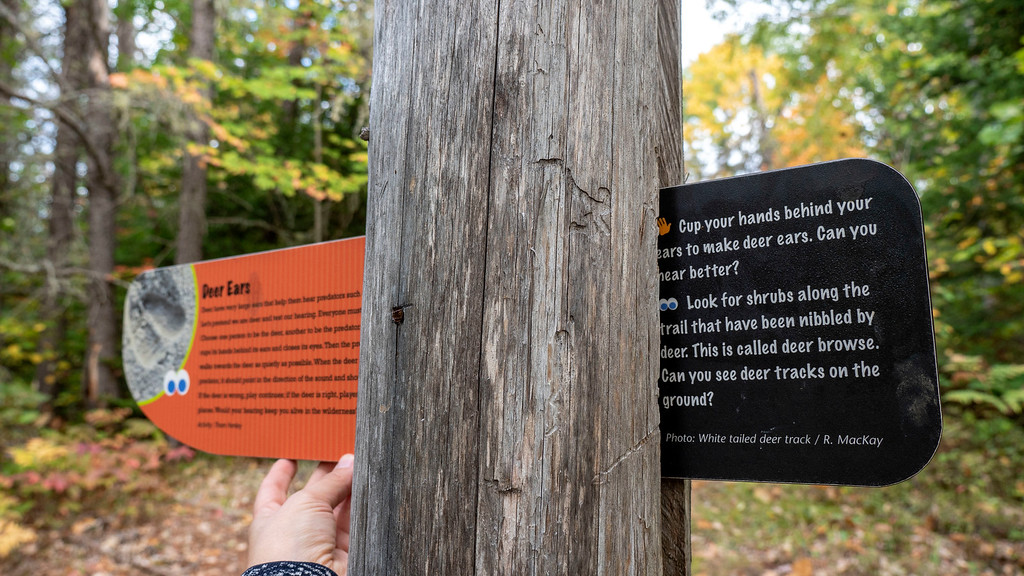McNaughton Trail - Footprints in Time - FIT - Informative sign posts along the hiking trail