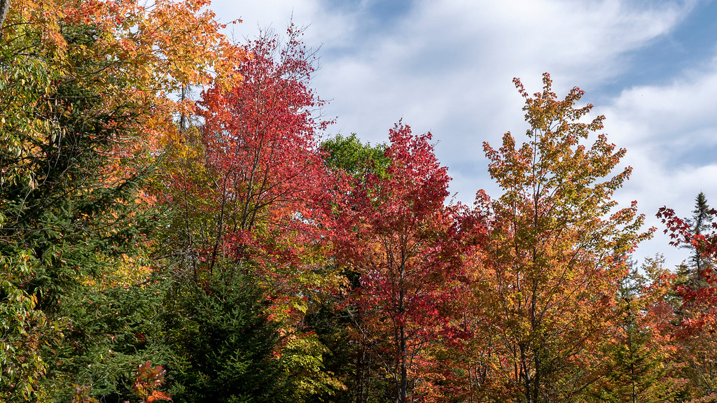 Ontario Fall Colors - Where to see fall colours in Ontario Canada