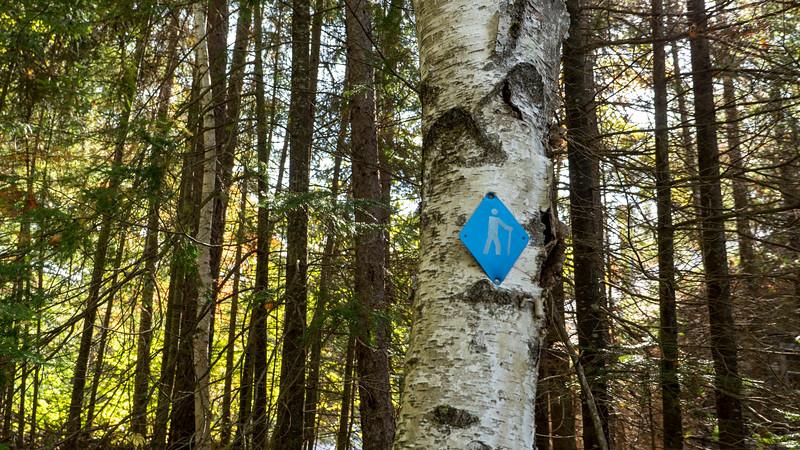 Hiking trail marker
