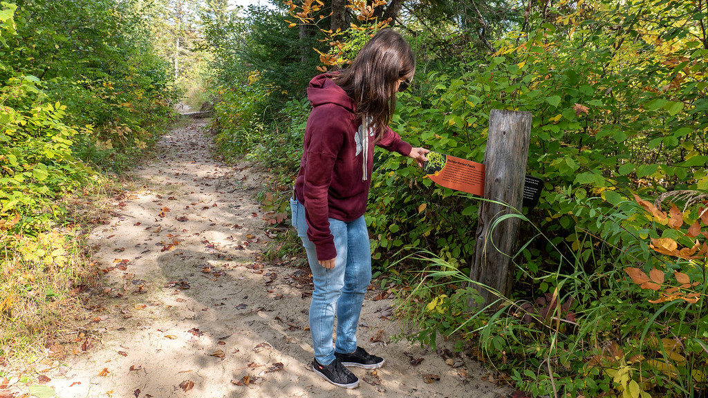 McNaughton Trail at Bonnechere Provincial Park - the Footprints in Time FIT Trail