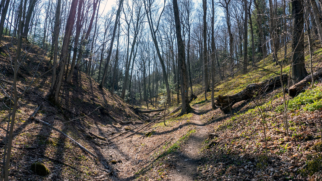 Hiking the ravines at Boyne Valley Park