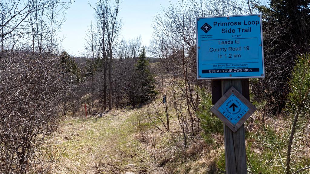 Primrose Loop Side Trail